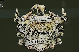 Izingwe